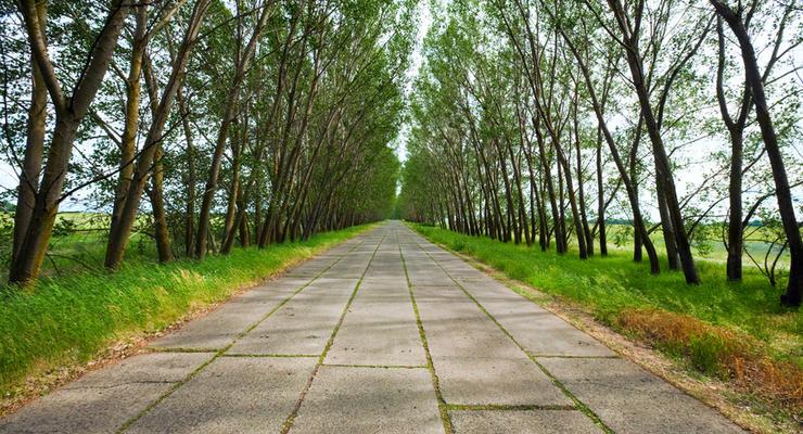 Первую бетонную дорогу в Украине построят между Херсоном, Кировоградом и Николаевом