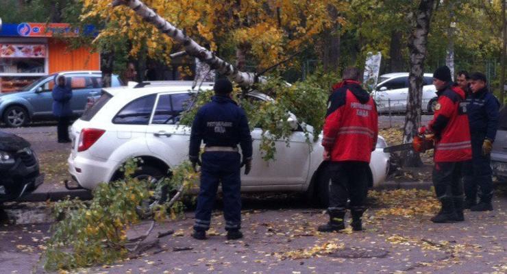 Из-за шторма в Киеве береза разбила внедорожник (фотофакт)