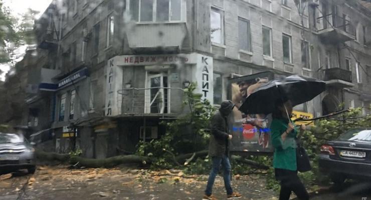 Непогода в Одессе: на автомобили падают деревья