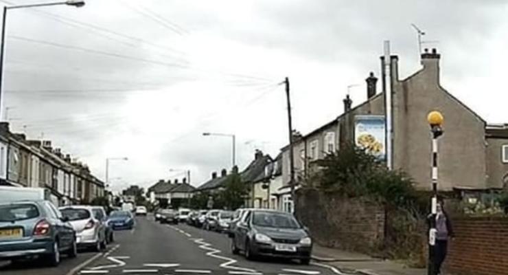 В Британии сняли на видео кота, который переходит дорогу, соблюдая ПДД
