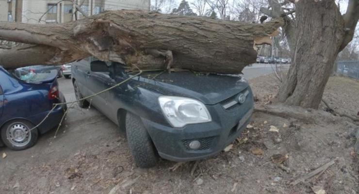 Как уберечь автомобиль в ветреную погоду - ТОП-5 правил