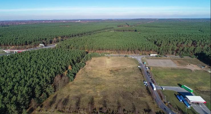 Тесла вырубит лес, чтобы построить экологически чистые автомобили