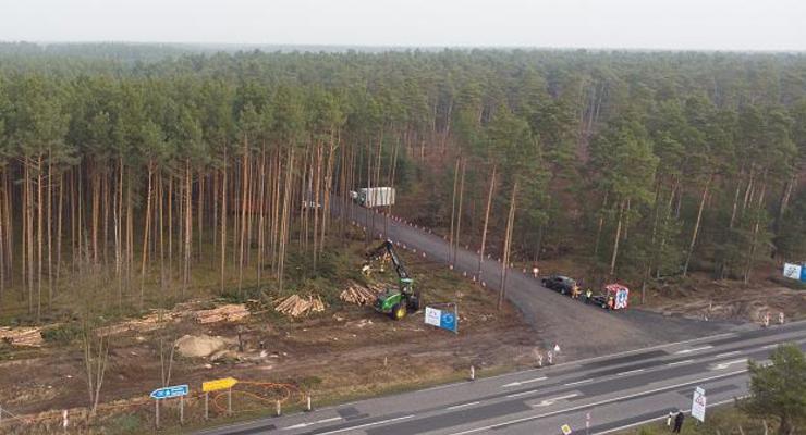 Неожиданный поворот: Суд в Германии остановил вырубку леса для Gigafactory Тесла