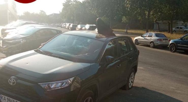 Побили авто и положили голову коровы на крышу: фото необычной мести 18+